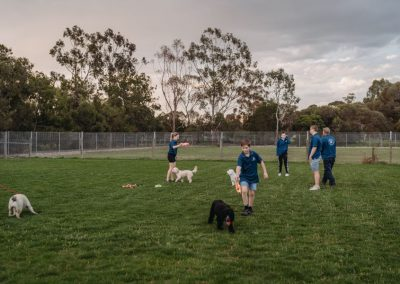 A Waggin Good Time Gallery 47